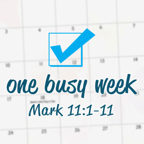 One Busy Week
